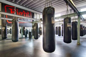 Top 10 Best Free Standing Punching Bags In 2020