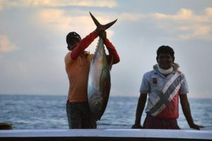 Fishing Trips – Enhance Your Fishing Experience With Travel